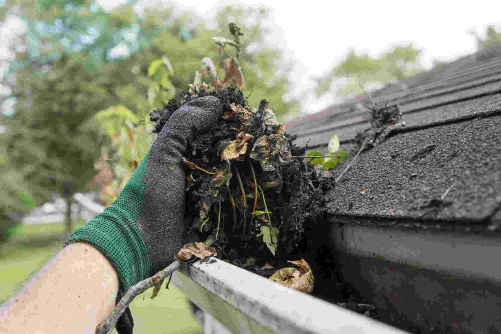 Gutter cleaning is excellent preventative maintenance for your home. Water and animals are kept from entering from your roof and foundation.